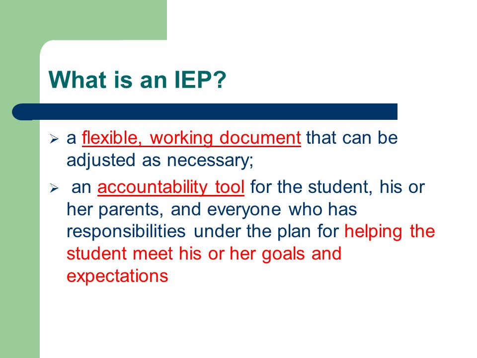 1.Gather Information 2. Set the Direction 3. Develop the IEP 4.