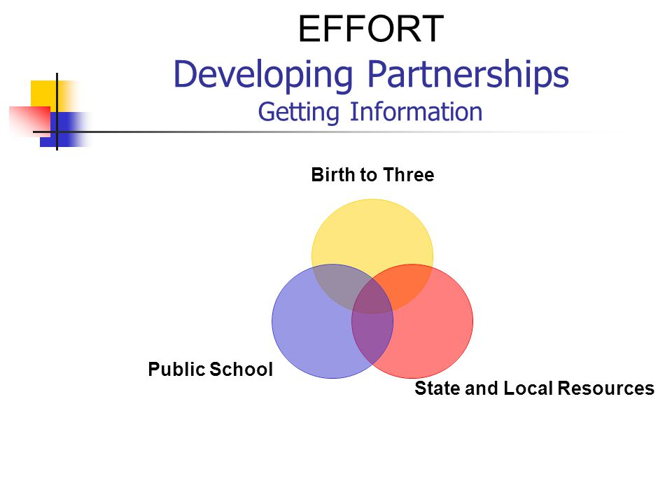 EFFORT Developing Partnerships Getting Information Birth to Three State and Local Resources Public School