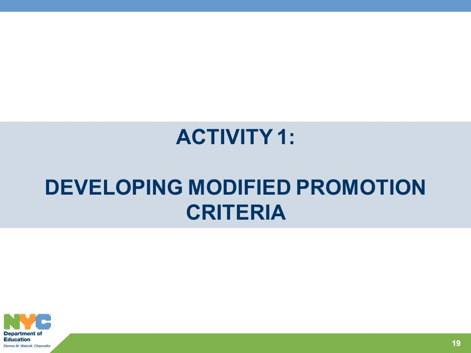 19 ACTIVITY 1: DEVELOPING MODIFIED PROMOTION CRITERIA