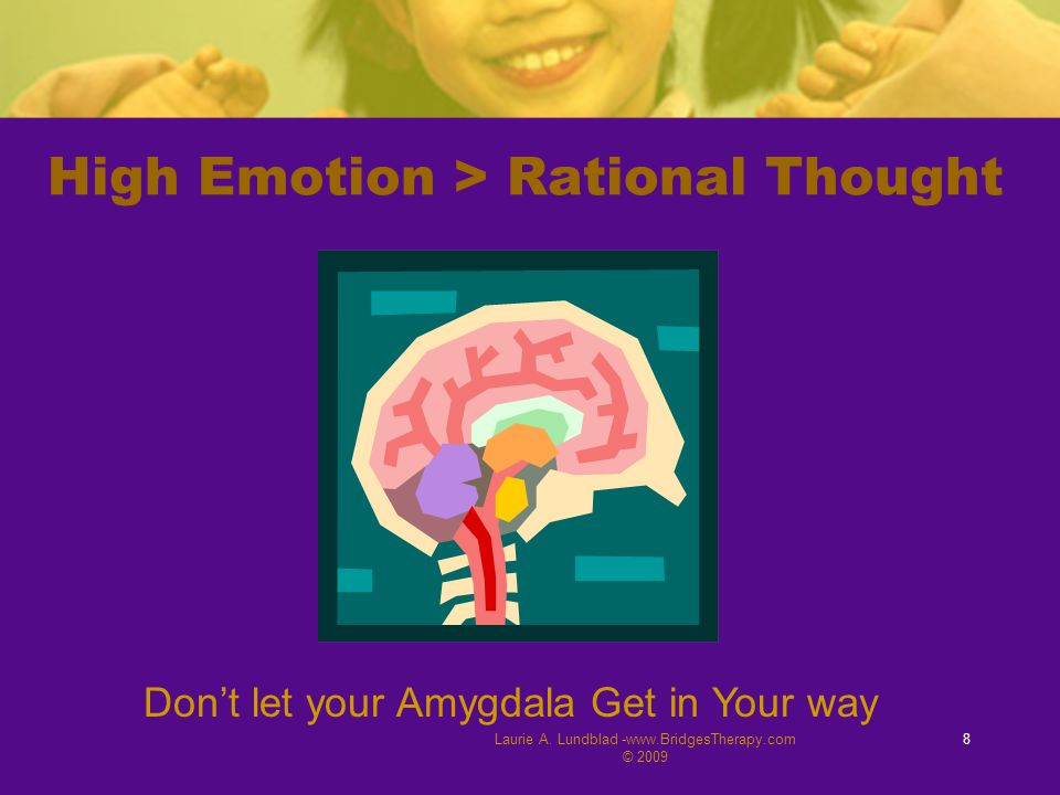 Laurie A. Lundblad -www.BridgesTherapy.com © 2009 8 High Emotion > Rational Thought Don't let your Amygdala Get in Your way