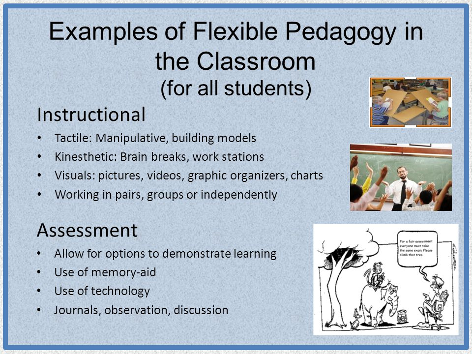 Examples of Flexible Pedagogy in the Classroom (for all students) Instructional Tactile: Manipulative, building models Kinesthetic: Brain breaks, work