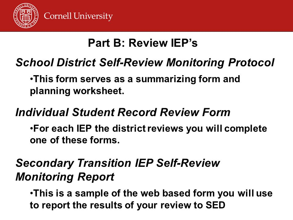 Part B: Review IEP's School District Self-Review Monitoring Protocol This form serves as a summarizing form and planning worksheet.