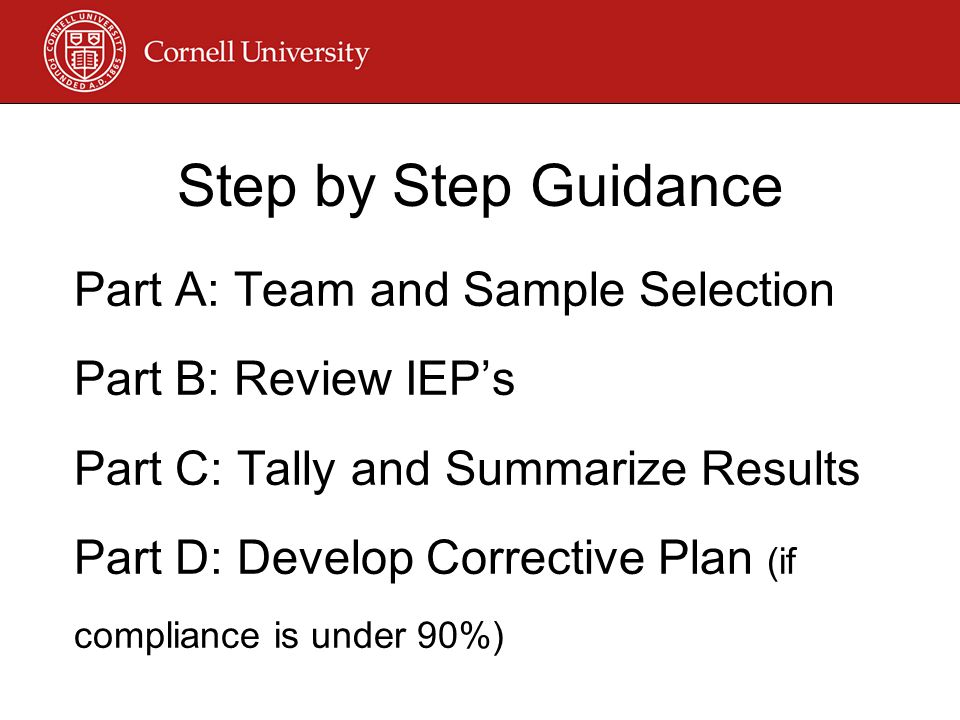Step by Step Guidance Part A: Team and Sample Selection Part B: Review IEP's Part C: Tally and Summarize Results Part D: Develop Corrective Plan (if compliance is under 90%)