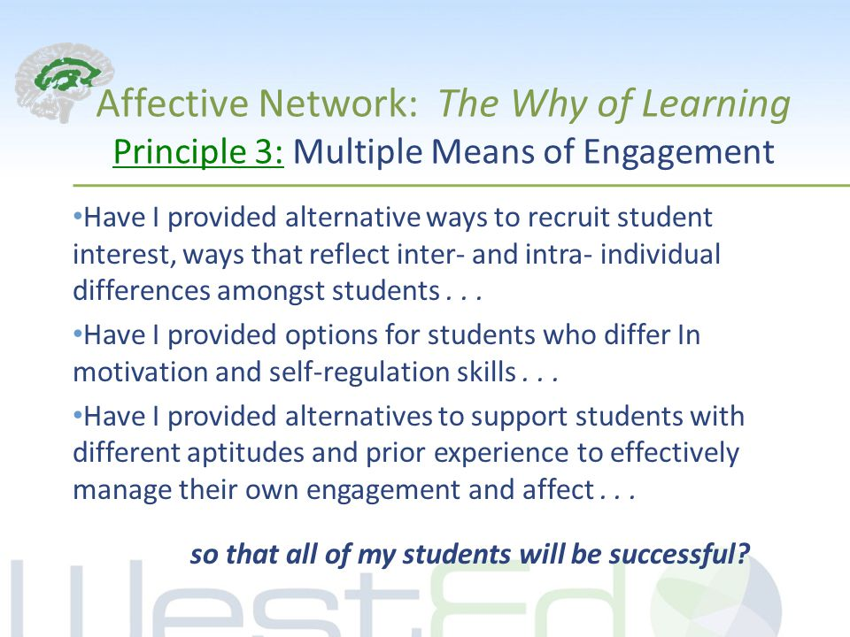 Affective Network: The Why of Learning Principle 3: Multiple Means of Engagement Have I provided alternative ways to recruit student interest, ways that reflect inter- and intra- individual differences amongst students...