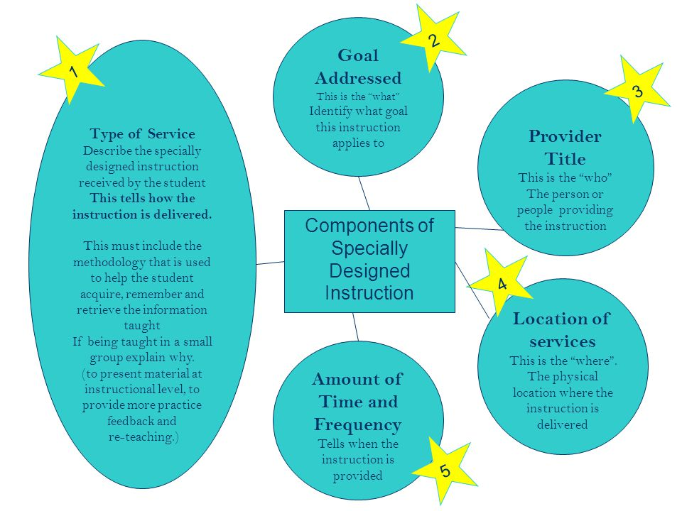45 Components of Specially Designed Instruction Type of Service Describe the specially designed instruction received by the student This tells how the