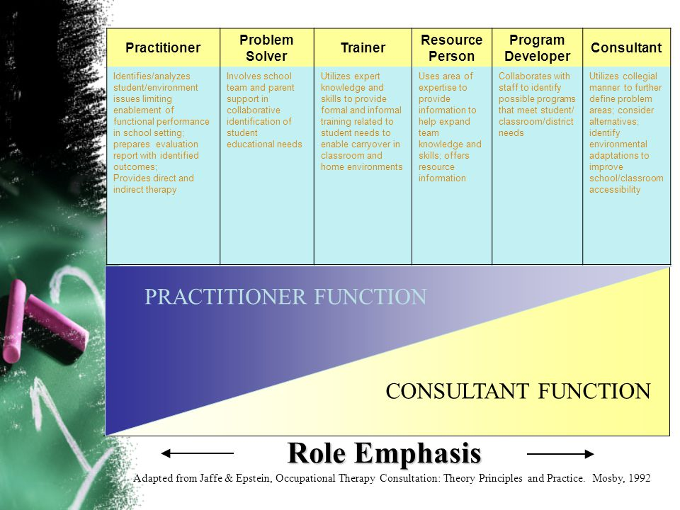 CONSULTANT FUNCTION Practitioner Problem Solver Trainer Resource Person Program Developer Consultant Identifies/analyzes student/environment issues li