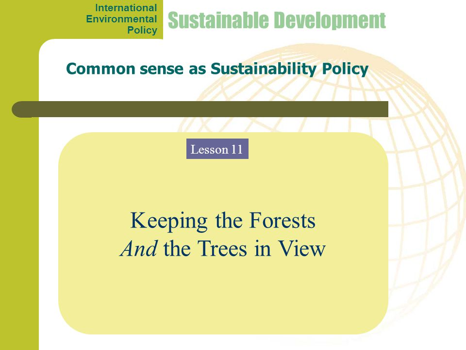 Keeping the Forests And the Trees in View Common sense as Sustainability Policy Sustainable Development Lesson 11 International Environmental Policy