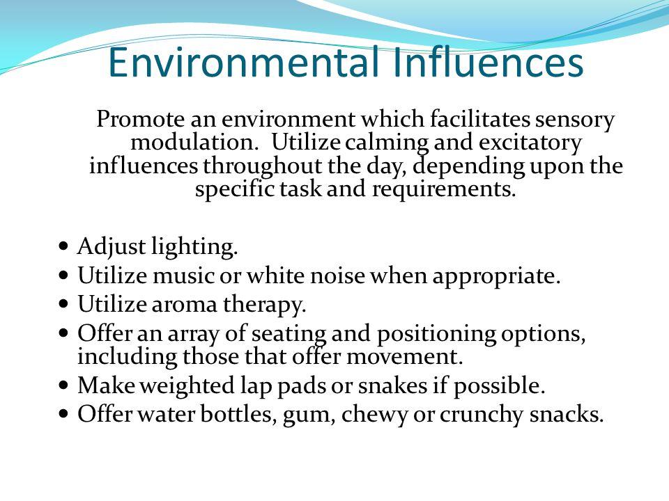 Environmental Influences Promote an environment which facilitates sensory modulation.