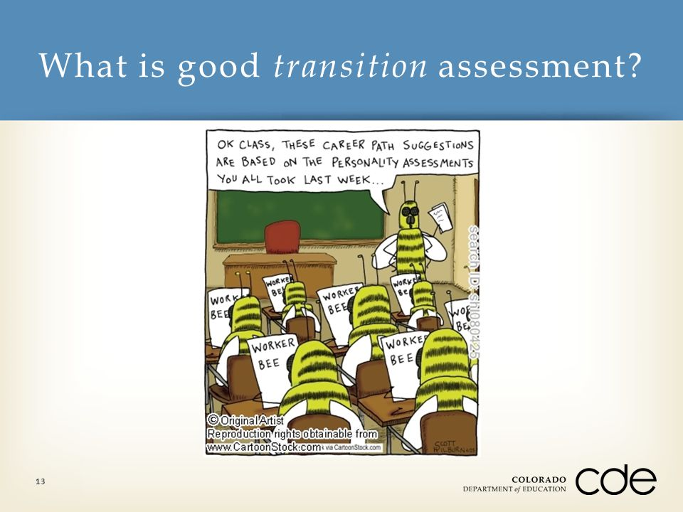 What is good transition assessment 13