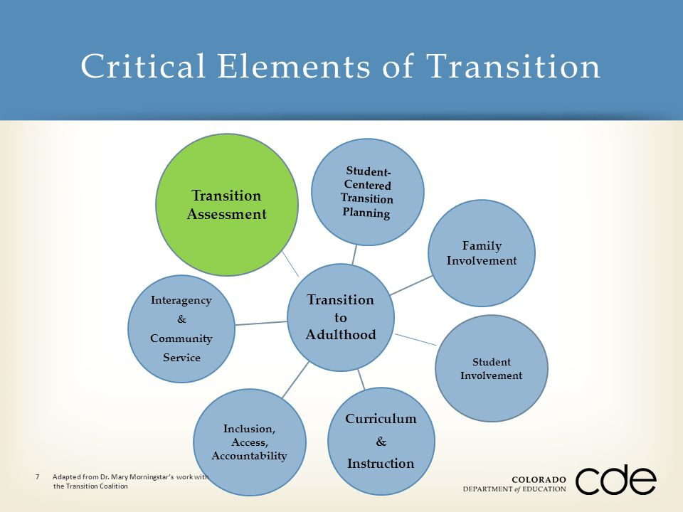 Transition to Adulthood Student- Centered Transition Planning Family Involvement Curriculum & Instruction Inclusion, Access, Accountability Interagency & Community Service Critical Elements of Transition 7Adapted from Dr.