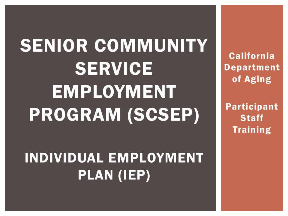  The IEP helps to increase the number of unsubsidized placements  The IEP helps the project meet performance goals  The IEP allows the program to serve more participants with limited funds IEPs Effect on the Project