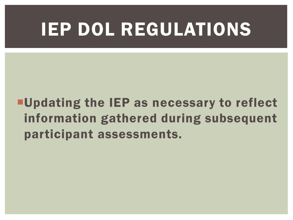  Updating the IEP as necessary to reflect information gathered during subsequent participant assessments.