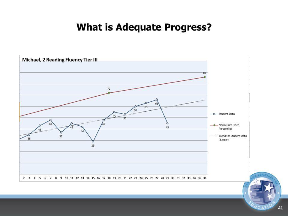 What is Adequate Progress? 40