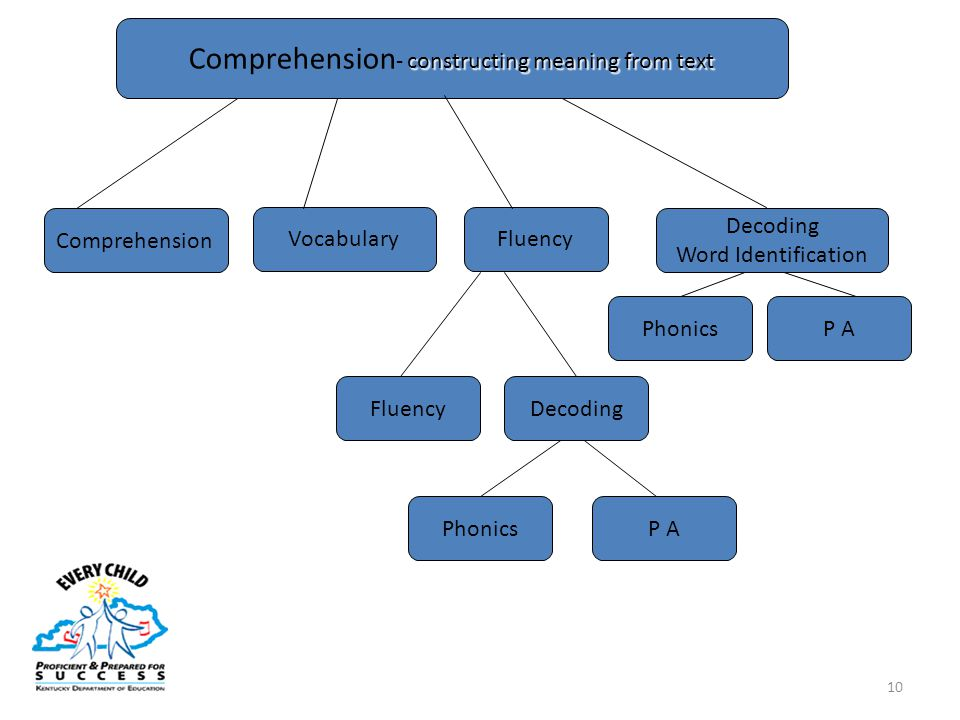 10 constructing meaning from text Comprehension - constructing meaning from text Phonics Decoding Word Identification Vocabulary Comprehension P A Phonics Fluency DecodingFluency P A
