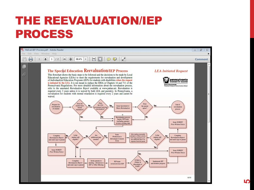 THE REEVALUATION/IEP PROCESS 5
