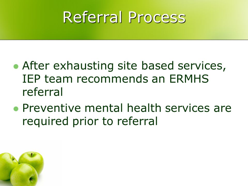 Length of Intense Services Initial referrals for assessment and those exiting service are a fluid process Average length of service is 12-18 months