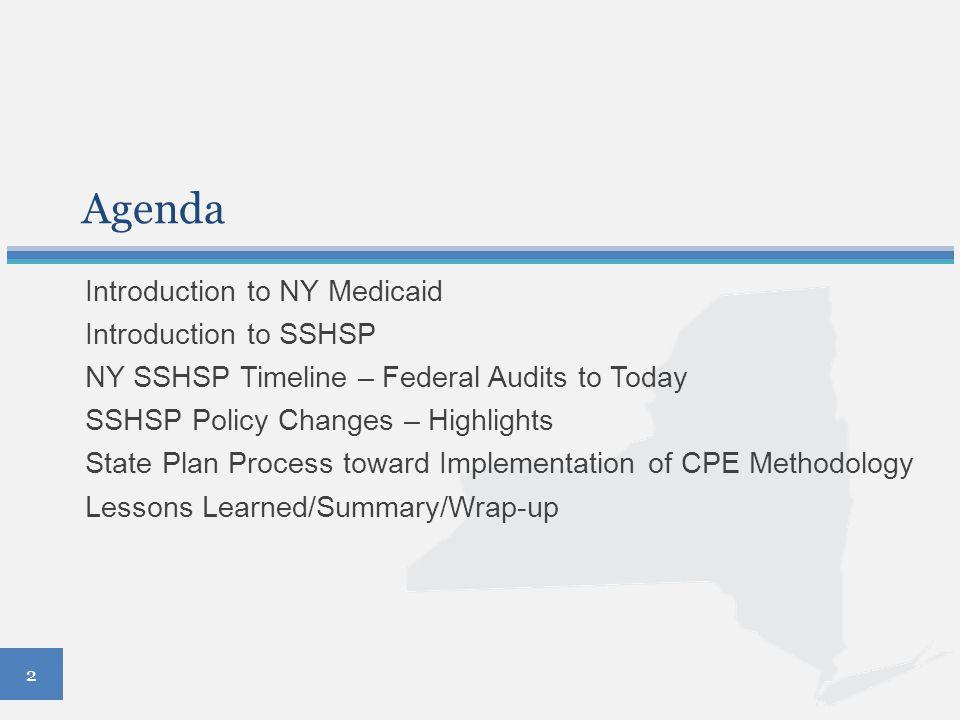 3 Introduction to New York Medicaid Key Medicaid Statistics State Population: 19,651,127 (2013 estimate) Percent of Population Receiving Medicaid: 27% 2013 Medicaid Expenditures: $46.6 billion (CY 2013) Key SSHSP Data 600 School Districts 50 Counties 50,000 Students (est.) Percent of Students Receiving SSHSP Services: <2%