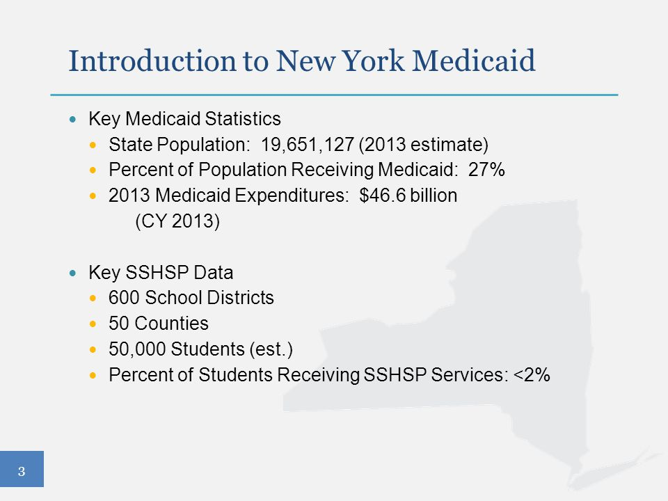 3 Introduction to New York Medicaid Key Medicaid Statistics State Population: 19,651,127 (2013 estimate) Percent of Population Receiving Medicaid: 27%