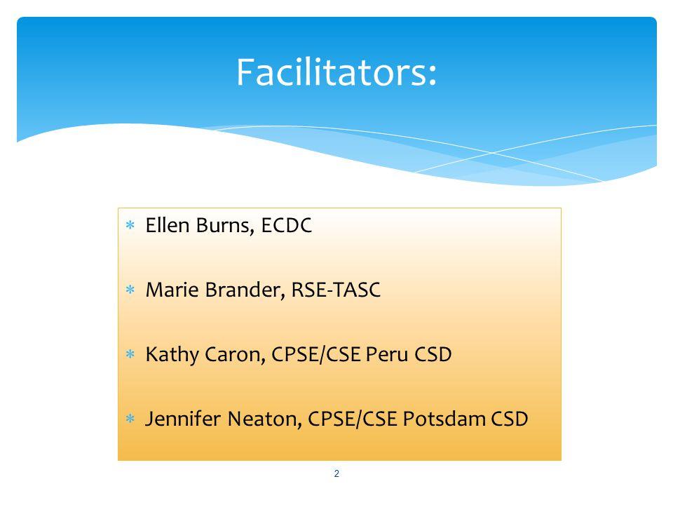 2 Facilitators:  Ellen Burns, ECDC  Marie Brander, RSE-TASC  Kathy Caron, CPSE/CSE Peru CSD  Jennifer Neaton, CPSE/CSE Potsdam CSD