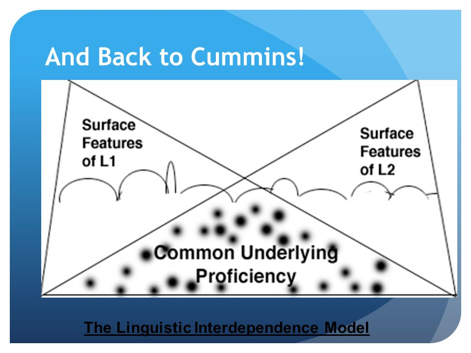 And Back to Cummins! The Linguistic Interdependence Model