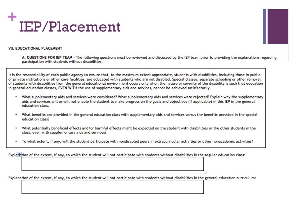 + IEP/Placement