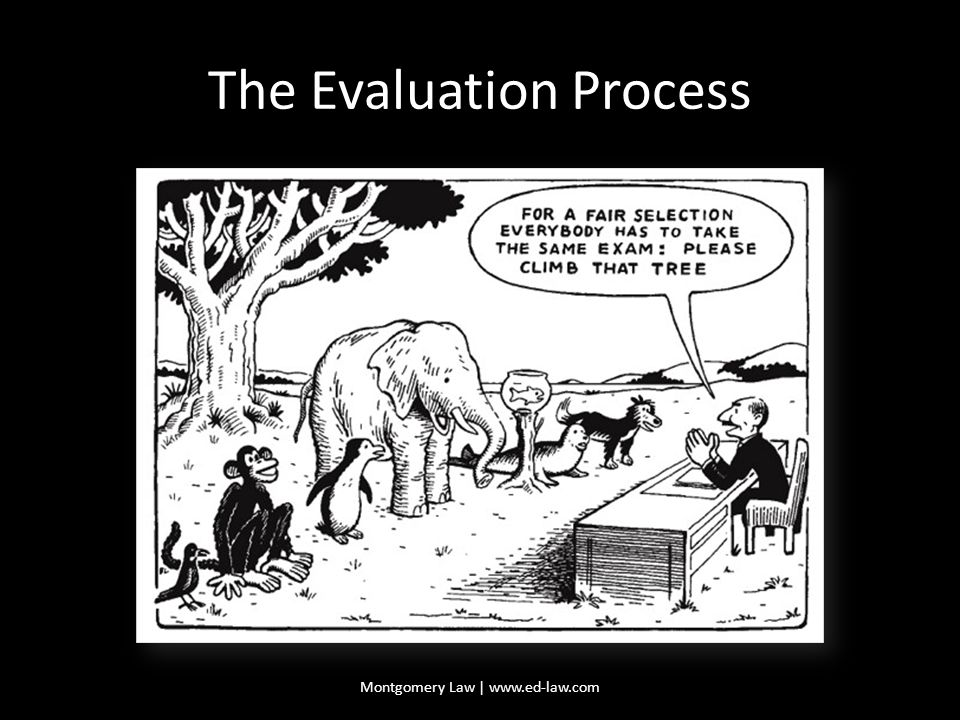 The Evaluation Process Montgomery Law | www.ed-law.com