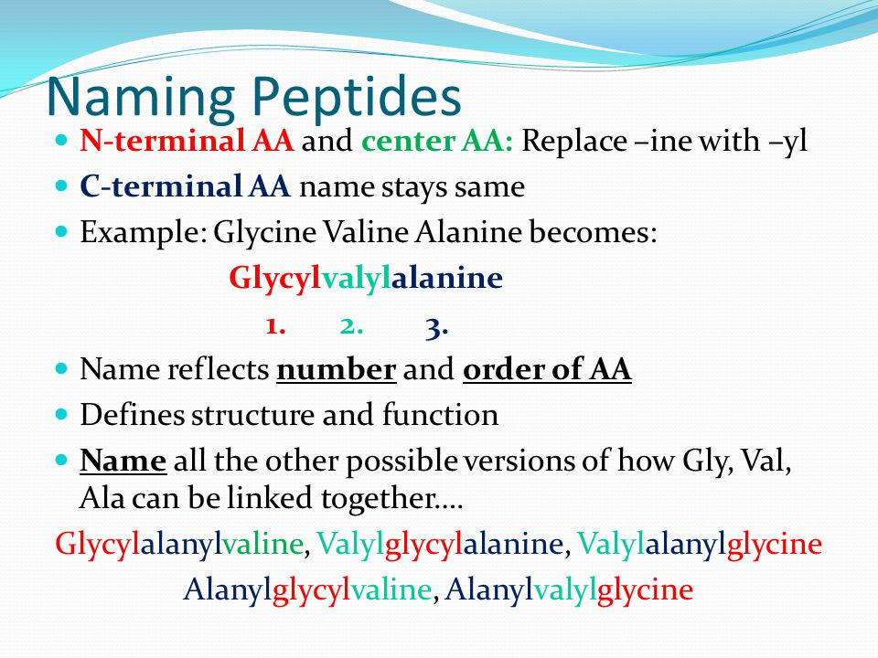 Naming Peptides N-terminal AA and center AA: Replace –ine with –yl C-terminal AA name stays same Example: Glycine Valine Alanine becomes: Glycylvalylalanine 1.