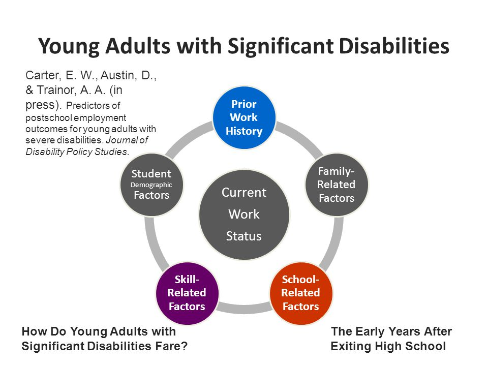 Young Adults with Significant Disabilities Current Work Status Prior Work History Family- Related Factors School- Related Factors Skill- Related Factors Student Demographic Factors How Do Young Adults with Significant Disabilities Fare.