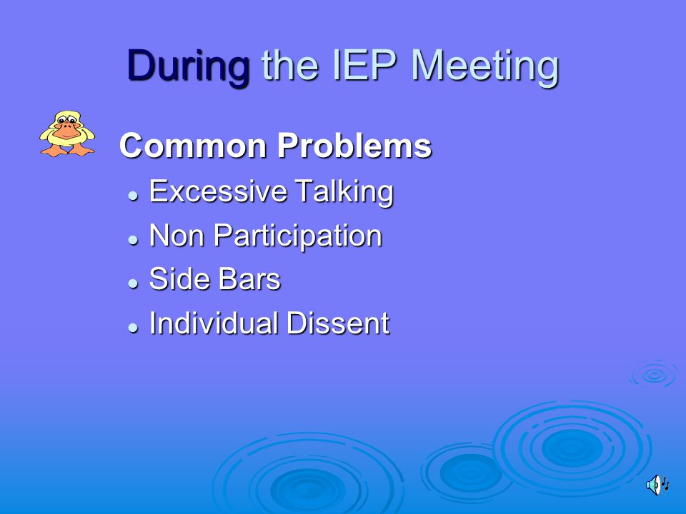 During the IEP Meeting Common Problems Excessive Talking Excessive Talking Non Participation Non Participation Side Bars Side Bars Individual Dissent Individual Dissent