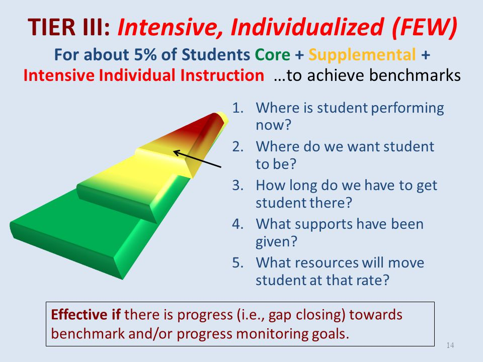 TIER II: Supplemental, Targeted (SOME) 13 1.Where are students performing now.