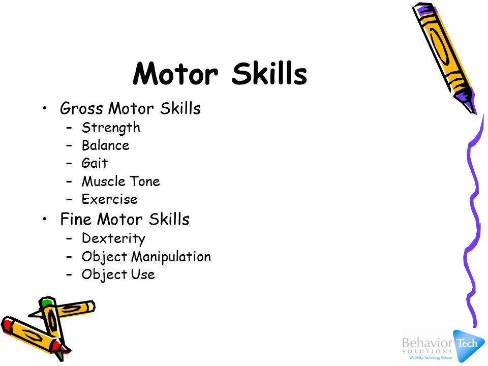 Motor Skills Gross Motor Skills –Strength –Balance –Gait –Muscle Tone –Exercise Fine Motor Skills –Dexterity –Object Manipulation –Object Use
