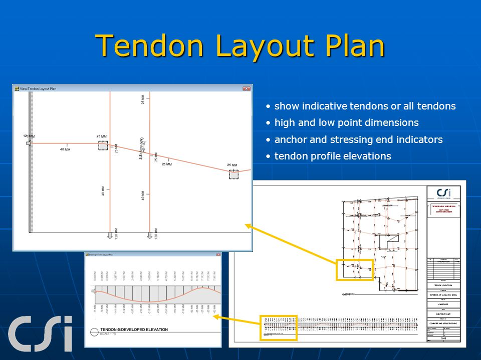 Tendon Layout Plan show indicative tendons or all tendons high and low point dimensions anchor and stressing end indicators tendon profile elevations