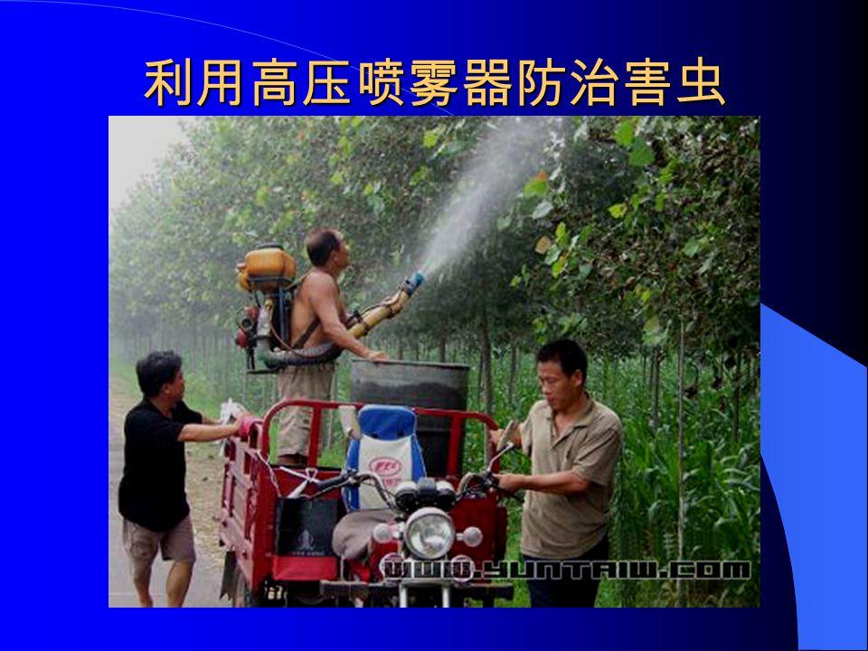 利用高压喷雾器防治害虫