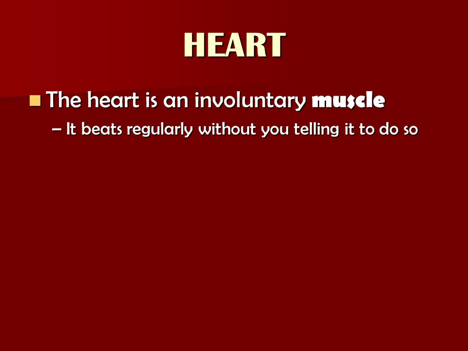 HEART The heart is an involuntary muscle The heart is an involuntary muscle –It beats regularly without you telling it to do so