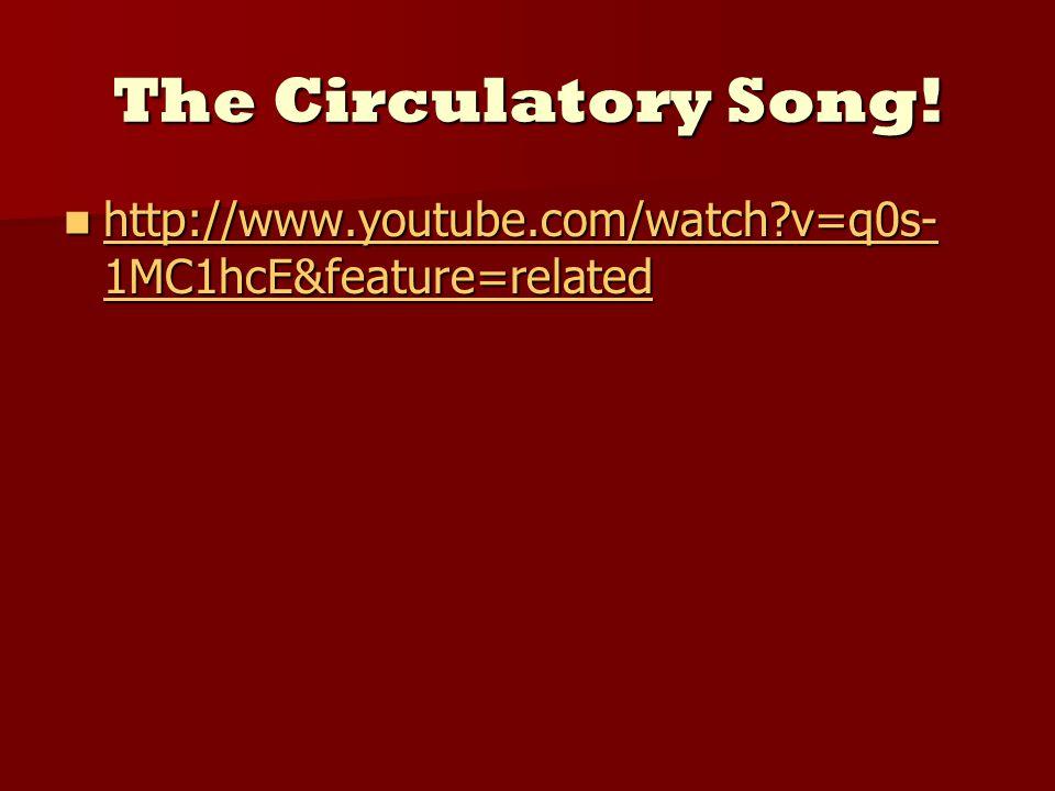 The Circulatory Song.