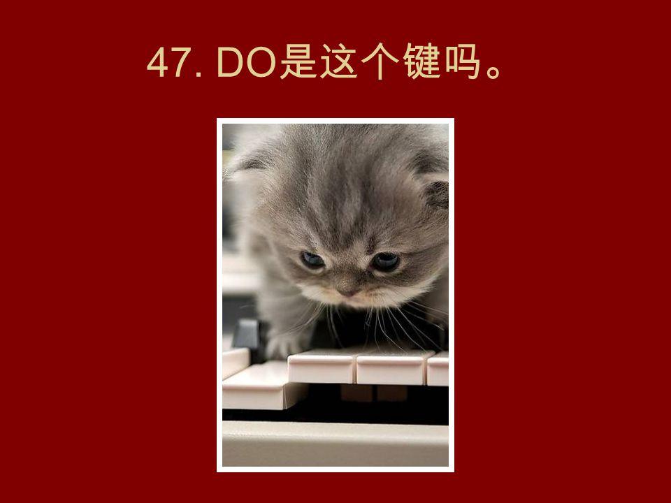 46. PUMA 猫。