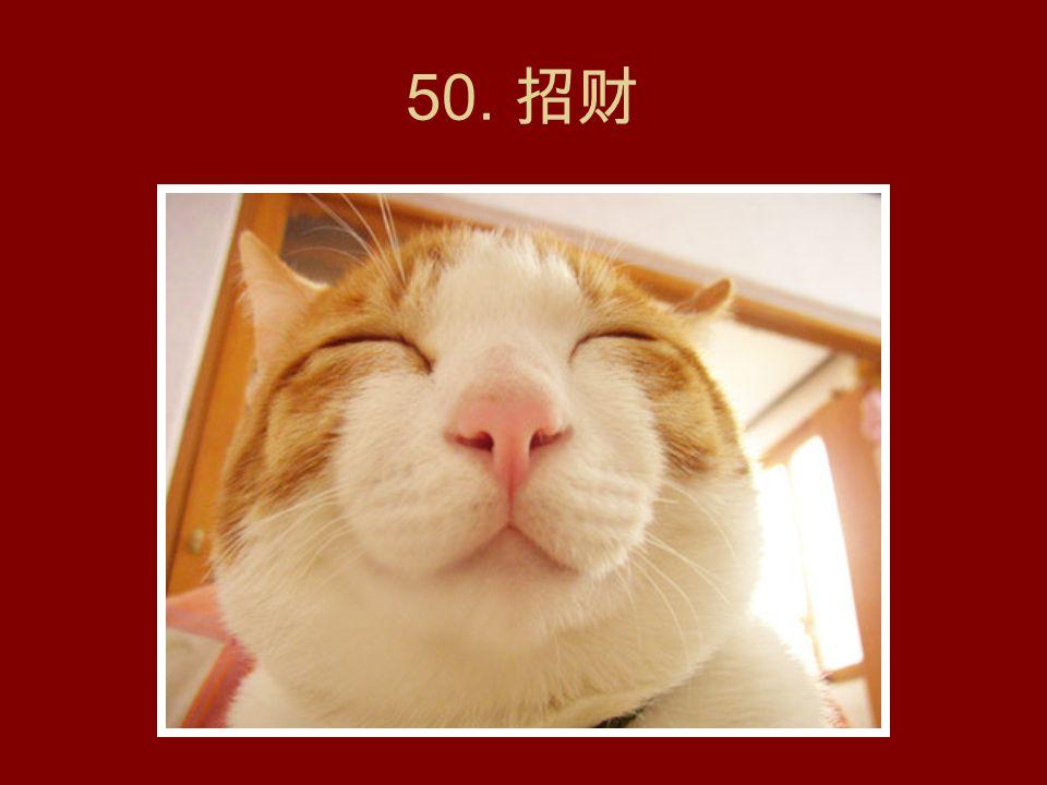 49. 三大猫高音。