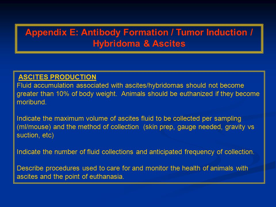 Appendix E: Antibody Formation / Tumor Induction / Hybridoma & Ascites ASCITES PRODUCTION Fluid accumulation associated with ascites/hybridomas should not become greater than 10% of body weight.