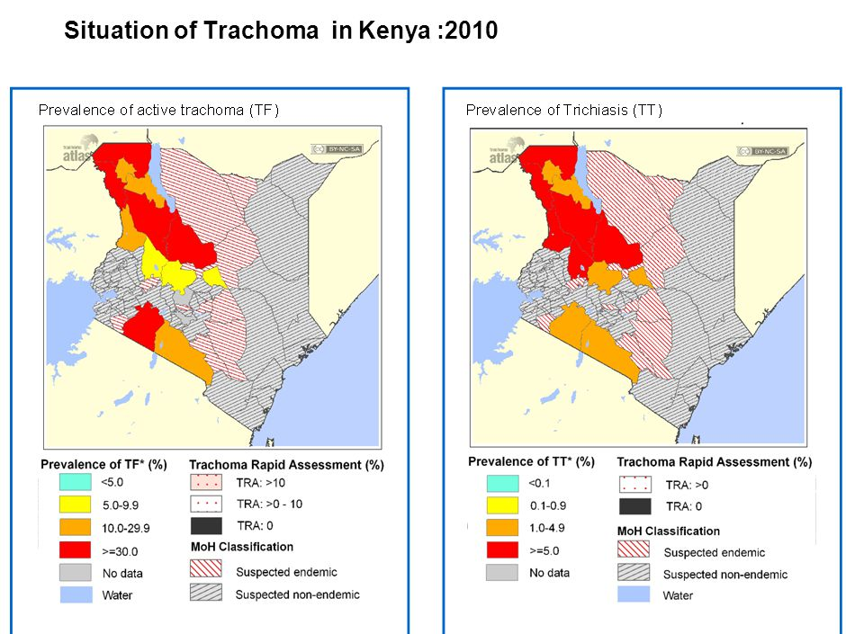 | 4 Genesis of the Trachoma Action Plan (TAP) template: 2010 GET 2020 meeting….
