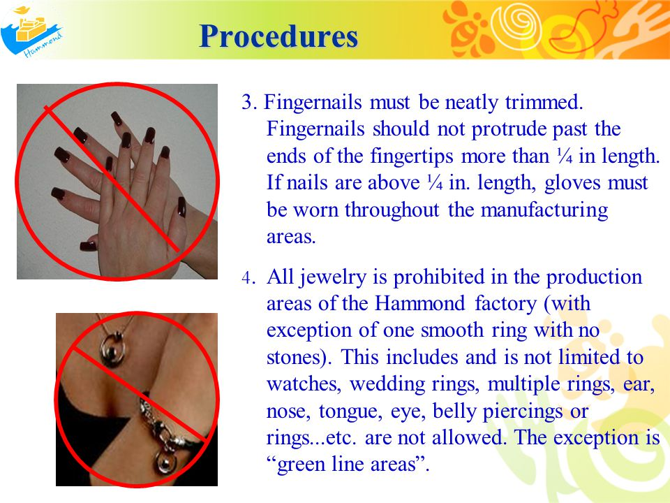 Procedures Procedures 3. Fingernails must be neatly trimmed. Fingernails should not protrude past the ends of the fingertips more than ¼ in length. If