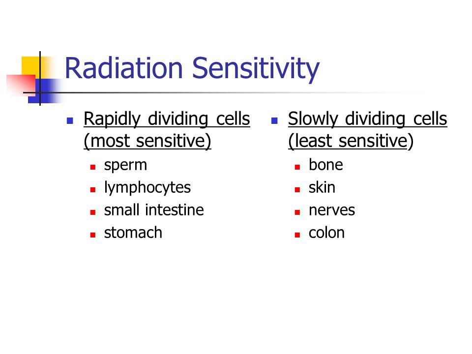 Radiation Sensitivity Rapidly dividing cells (most sensitive) sperm lymphocytes small intestine stomach Slowly dividing cells (least sensitive) bone skin nerves colon