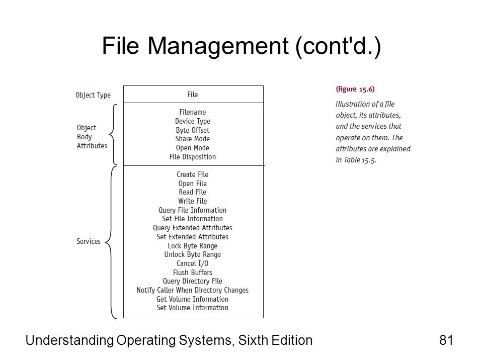 Understanding Operating Systems, Sixth Edition82 File Management (cont d.) There is a distinction between a file object –A memory-based representation of a shareable resource that contains only data unique to an object handle.