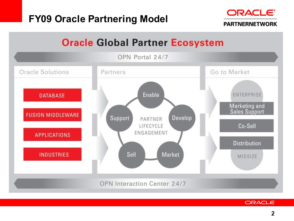 2 FY09 Oracle Partnering Model