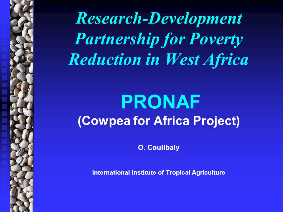 Objectives and Strategies for a Research and Development Partnership POVERTYREDUCTION Access to Social Services High Productivity Reduction of losses Access to markets (Input/Products) Access to Capital Reinforcement Capacity/decision Capacity/decision Environmental Protection Food Security (Quant, qual) (Quant, qual) * REVENUES (Ag-Nag)