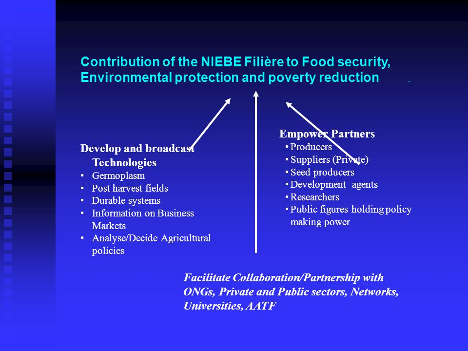 Contribution of the NIEBE Filière to Food security, Environmental protection and poverty reduction.