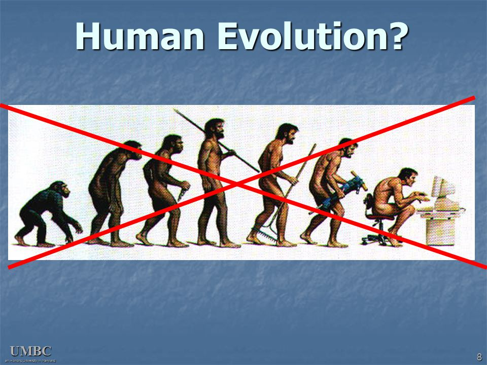 UMBC an Honors University in Maryland 9 Human Evolution.