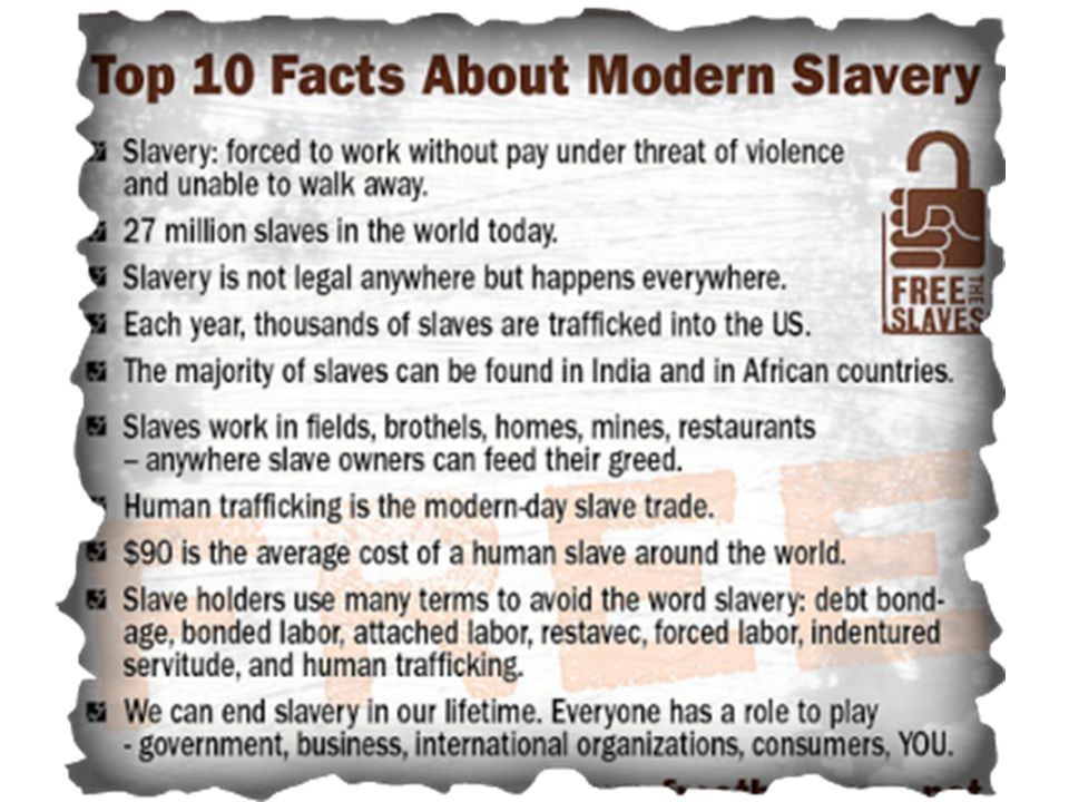 In 1850 a strong male sold for today s equivalent of $40,000 That same slave today averages $30-$300 Why?