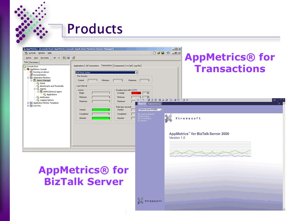 Products AppMetrics® for Transactions AppMetrics® for BizTalk Server
