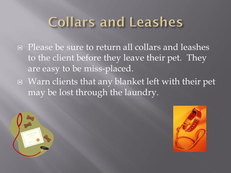  Please be sure to return all collars and leashes to the client before they leave their pet.