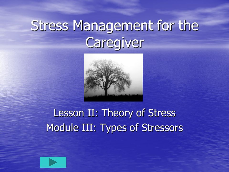 Stress Management for the Caregiver Lesson II: Theory of Stress Module III: Types of Stressors